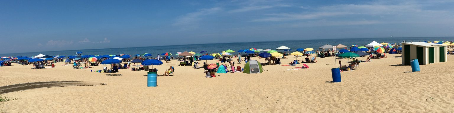 Pictured: A beach in Delaware with a lot of people.