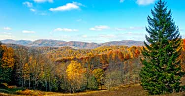 Pictured: Autumn trees and far away mountains in Parkersburg West Virginia.