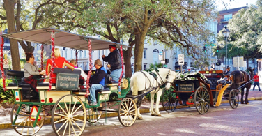 Pictured: A horse and buggy in downtown Savannah Georgia.