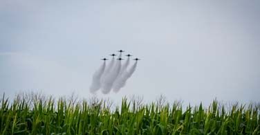 Pictured: Jets flying over a grass field.